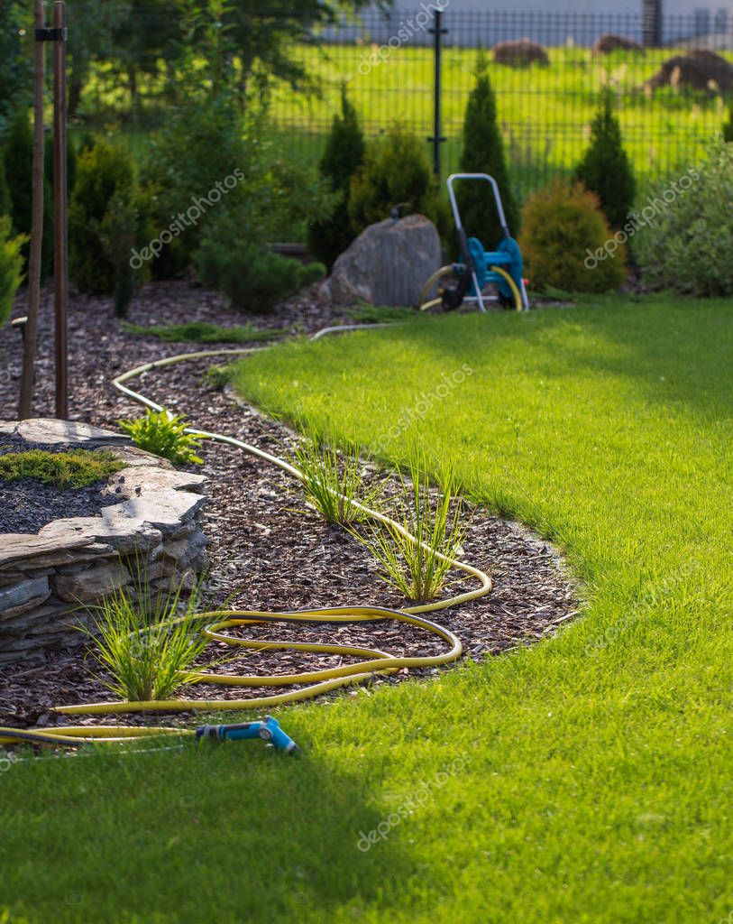 Rubber garden hose laying on lawn and bark garden rim.