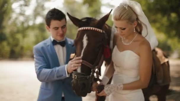 Portrét okouzlující mladý pár novomanželů něžně dotýká hnědý kůň