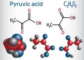 Fényképek Piroszőlősav (piruvát) molekula. Ez volt a legegyszerűbb alfa-keto savak. Szerkezeti kémiai képlet és a molekula modell. Vektoros illusztráció