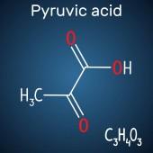 Fényképek Piroszőlősav (piruvát) molekula. Szerkezeti képlete és molekula modell a sötét kék háttér. Vektoros illusztráció