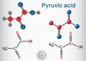 Fényképek Piroszőlősav (piruvát) molekula. Ez volt a legegyszerűbb alfa-keto savak. Szerkezeti kémiai képlet és a molekula modell. Papírlapra egy ketrecben. Vektoros illusztráció