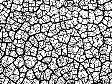 Cracked earth soil texture vector background