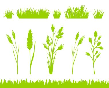 Green grass silhouettes set isolated on white background vector