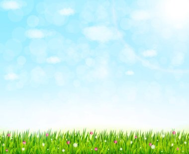 Nature background with green grass and flowers
