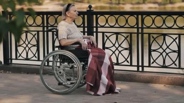 Seniorin sitzt im Rollstuhl in der Natur