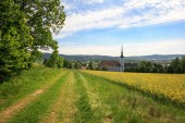 Fotografie View to Cunewalde