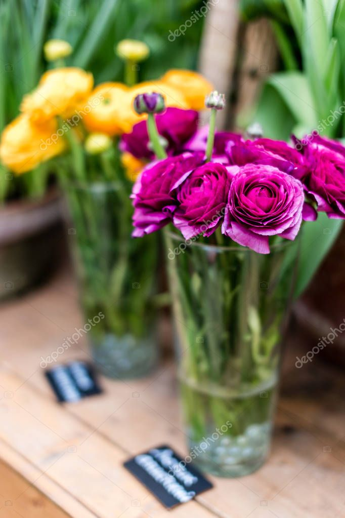 A beautiful bouquet of spring flowers as a gift to loved ones, colleagues. A gift for March 8 beautiful women
