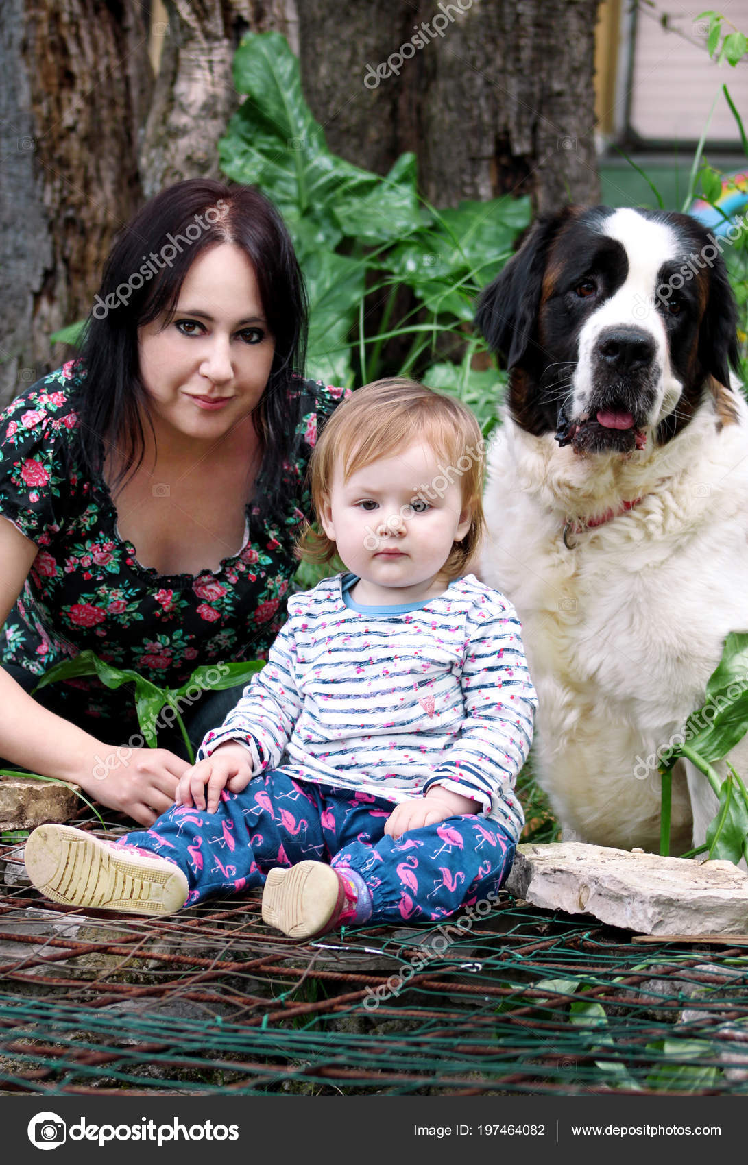 Family And Love Pets Concept Portrait With Mother Baby Girl Is Sitting Playing Dog In Garden Outdoors Child Mom St Bernard