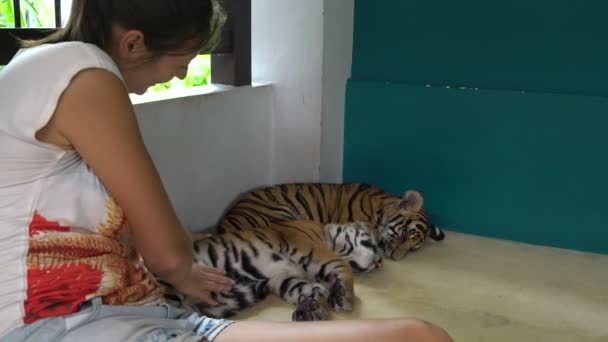 A woman sitting near small tigers and strokes them