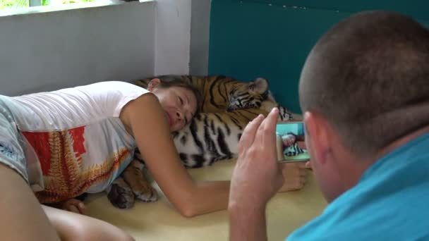 Woman lies with the small tigers. Man takes pictures of the girl on the phone