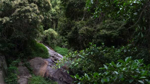 Malebná krása lesa s vodopádem