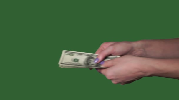 Woman hands counting money us dollars. Green screen. Chromakey.
