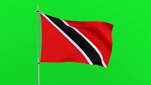 Flag of the country   Trinidad and Tobago on green background. 3D rendering