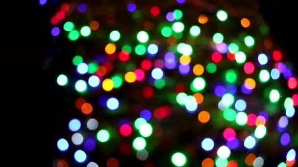 dekorace barev duhové barvy na stromě v noční zahradě
