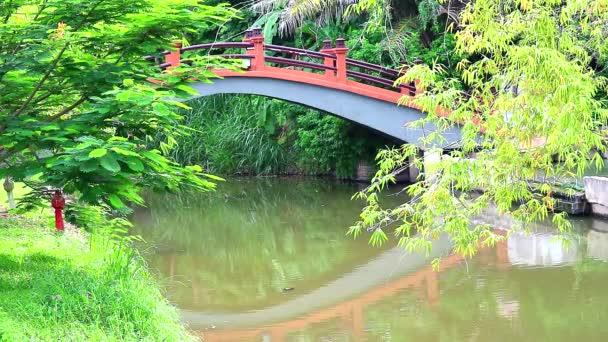 odraz mostu ze starobyté Asie a zelených listů a bambusu na vodě v rybníku