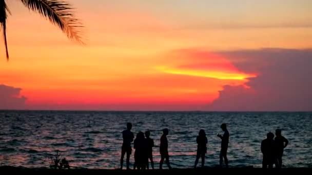 silhouette family and people on beach sea and sunset cloud on sky1