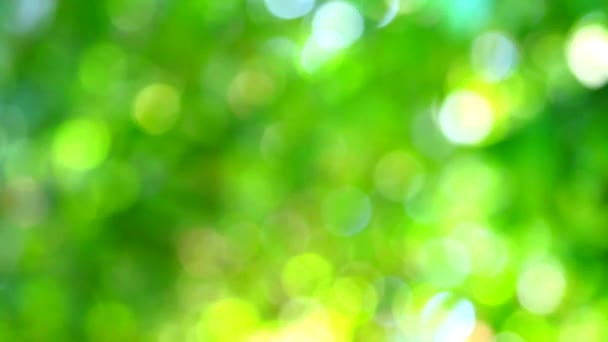 zöld rózsaszín sárga blur háttér absztrakt színes levelek virágfa a kertben