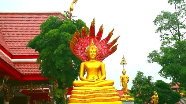 gold buddha sit on naga seven head atl Buddhist temple in of Chonburi Thailand