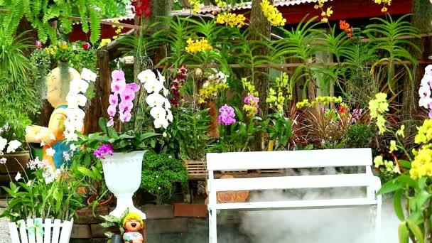 zahradní květina a orchideje a lavice a kouř ze suchého ledu v zahradě