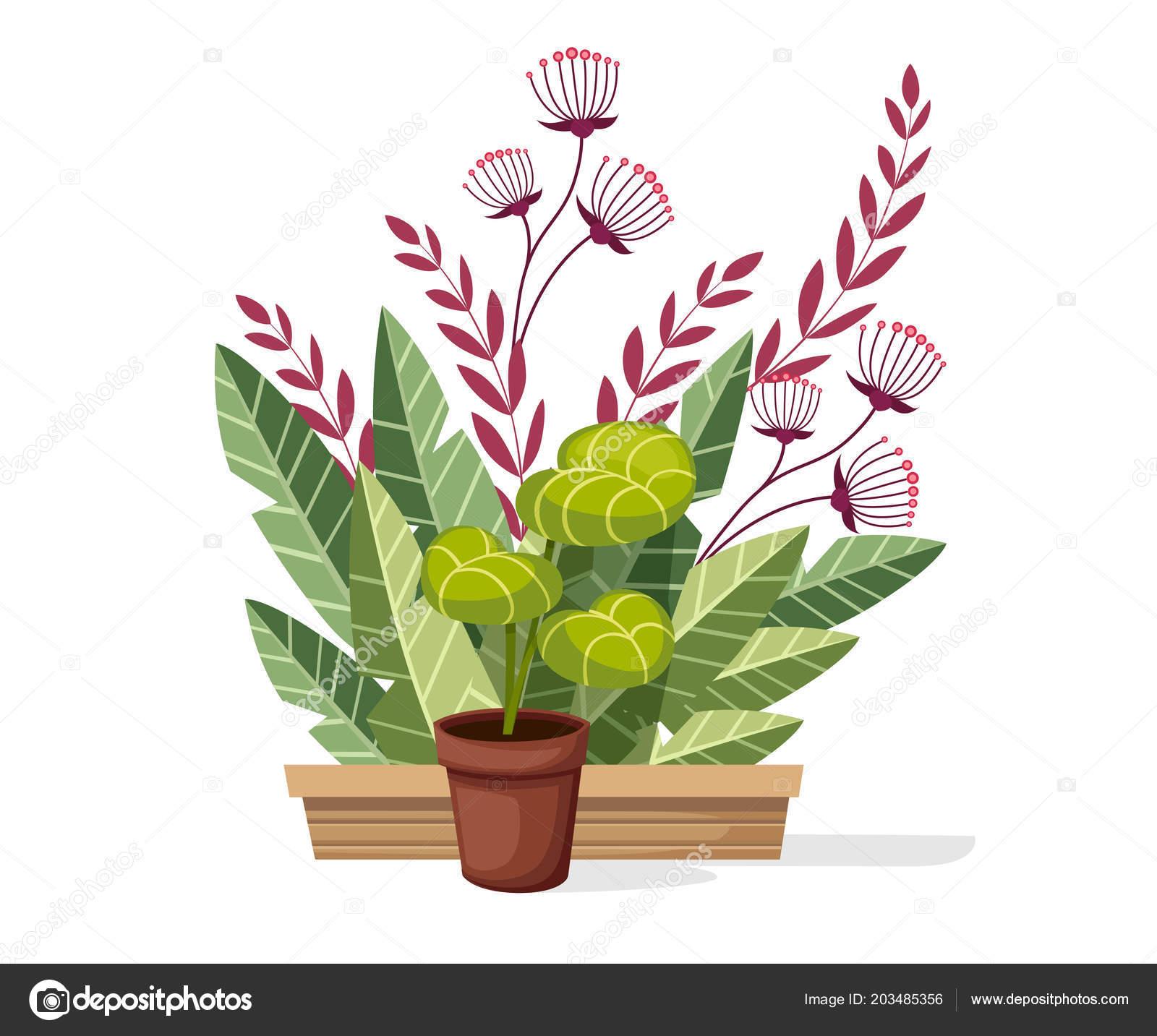 Moderne Pflanzen. Top Sch Ne Moderne For Moderne Pflanzen