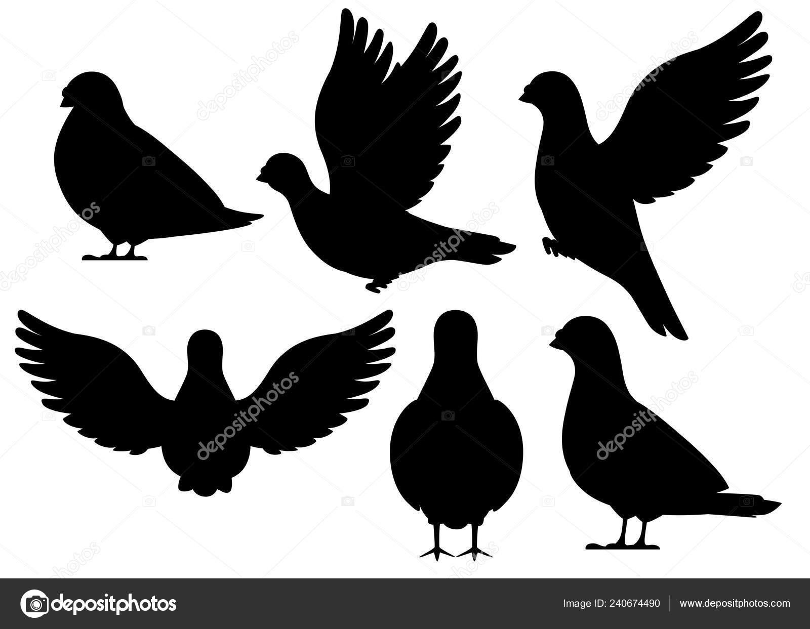 Silhouette Noire Ensemble Icône Pigeon Oiseau Volant Assis
