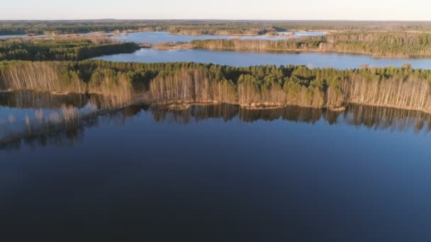 Picturesque landscape with forest and pond at sunset. Beautiful sunlight. Aerial view.