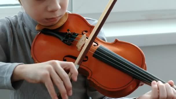 Hegedülni. Felismerhetetlen hét év régi fiú játék a hegedű Vértes. Elölnézet.