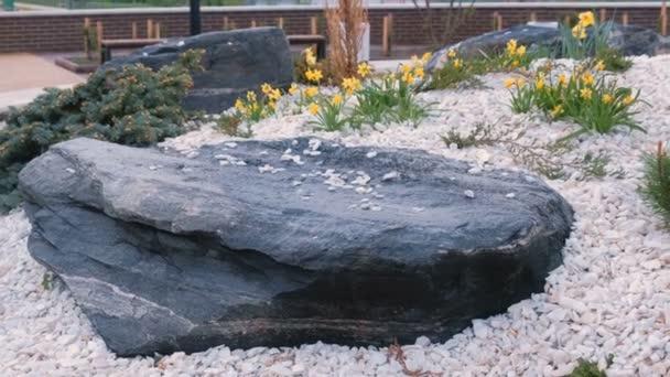 Krásné krajiny design s bílými a černými kameny a žluté květy