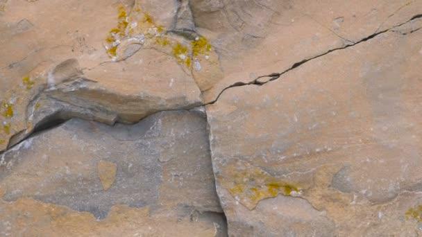 Detailní pohled na Rock. Hnědé a žluté rock textury, zničených útesu