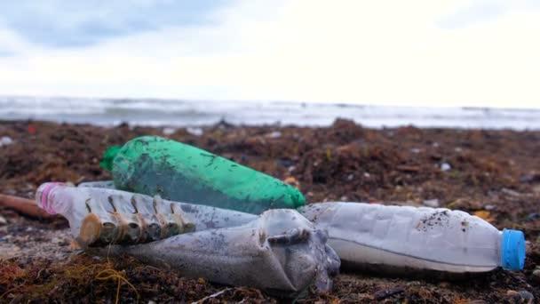 Plastikflaschen, verendete Krabben, Tierreste und andere Abfälle zwischen den Algen am sandigen Meeresufer nach dem Sturm.
