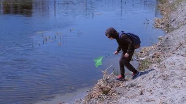 Junge fängt Frösche auf dem Fluss mit Schmetterlingsnetz ein.