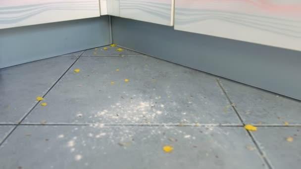 Frau staubsaugt den Küchenboden mit grauer Fliese ohne Bürste, nur Staubsaugerrohr. Sie räumt die auf dem Boden verstreuten Cornflakes und Mehl auf. Nahaufnahme.