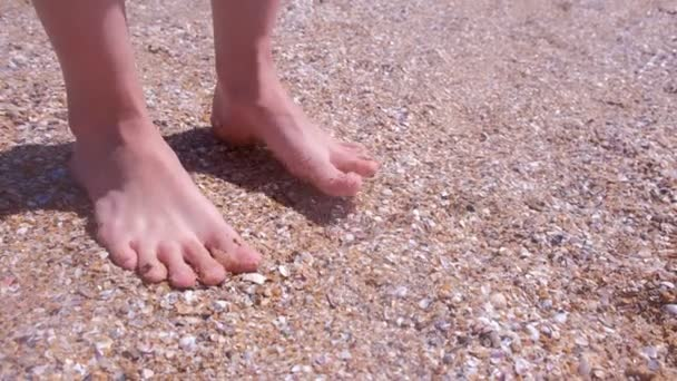 Holá šlapka na písečné pláži v mušle na pobřeží.
