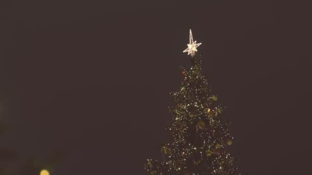 Krásné blikající vánoční strom na náměstí v noci.
