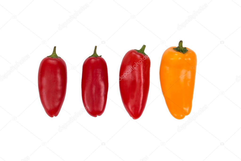 Ovely mini red and yellow  peppers on white isolate background. Fresh vegetable