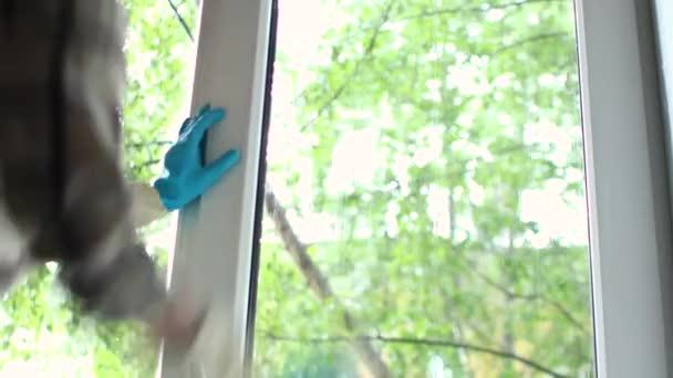 žena v modrých rukavicích čistící okno s hadrem a čisticím sprejem doma. úklidová služba.