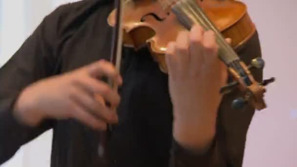 Houslista muž hraje na housle na bílém pozadí. Zblízka