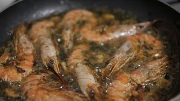 Cooking king prawns with dill and garlic in a pan with olive oil. Frying Shrimp. Slow Motion.