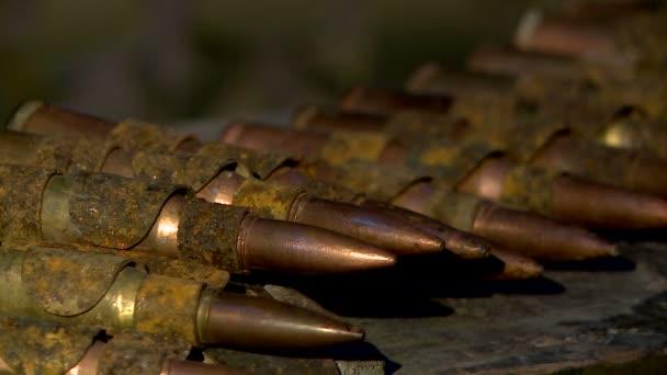 Munitionsgurt, Munition