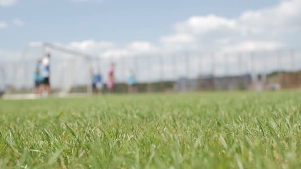 Training football players on the green field. Background of football training,