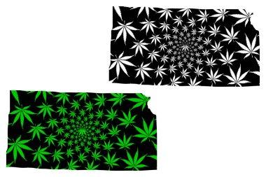 Kansas - map is designed cannabis leaf