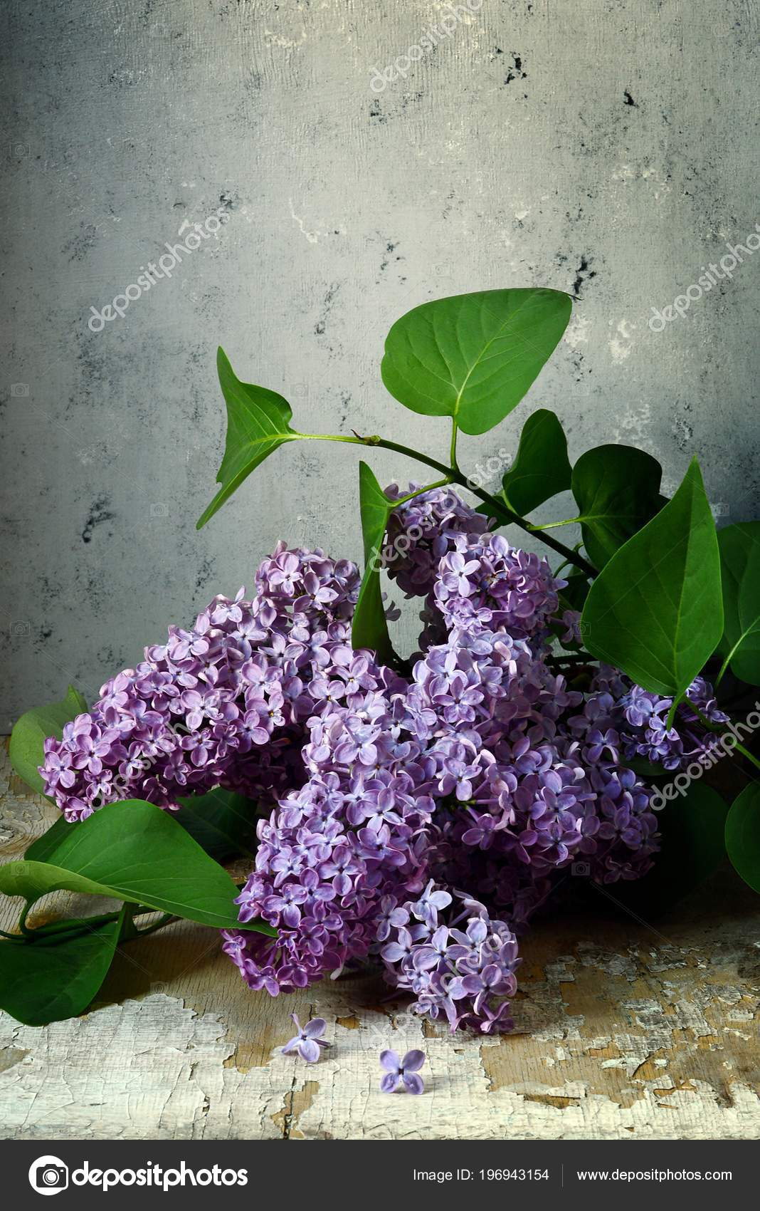 Bouquet Blossoming Lilac Rustic Style Fragrant Spring Flowers