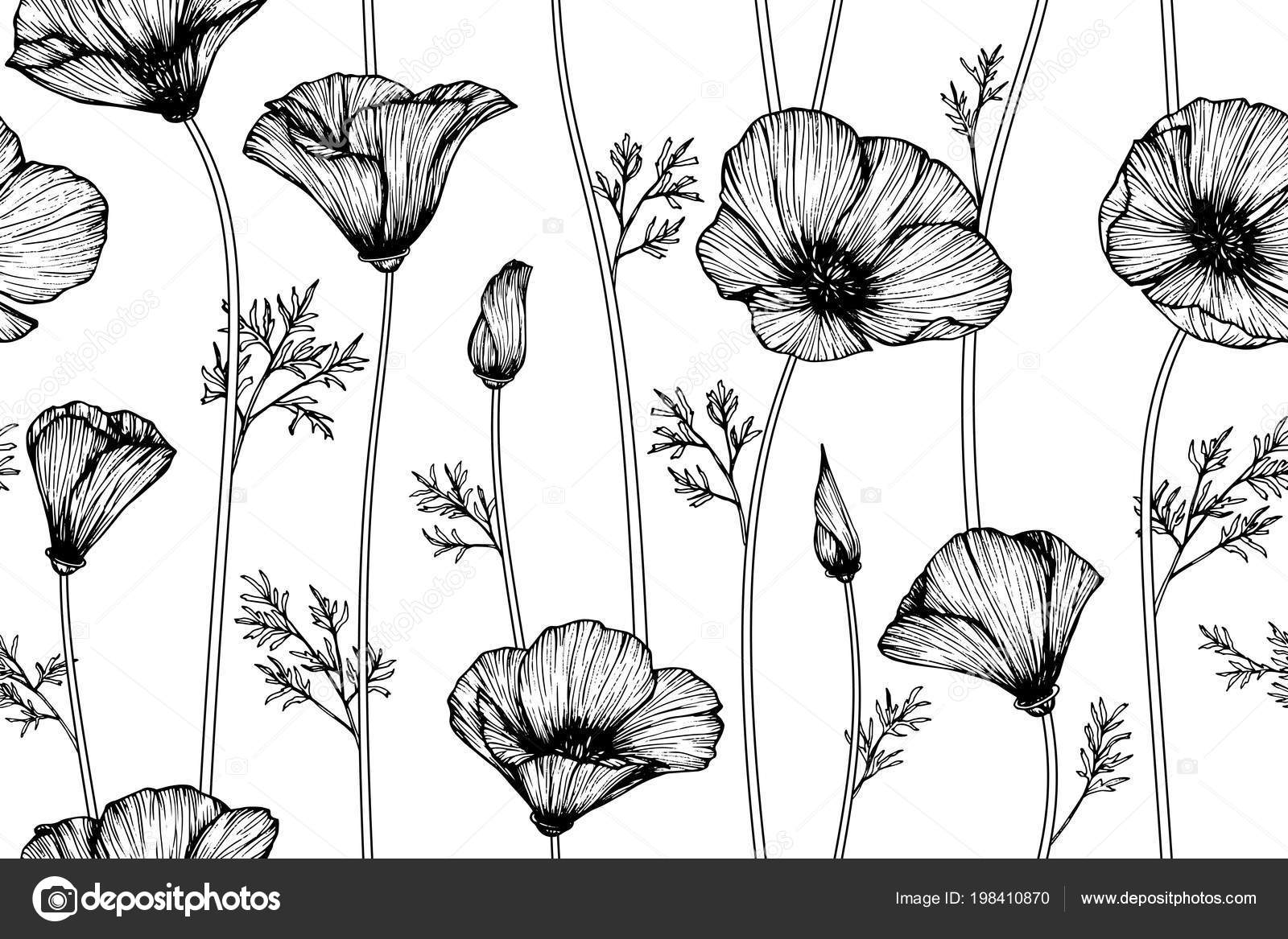 Seamless California Poppy Flower Pattern Background Black White