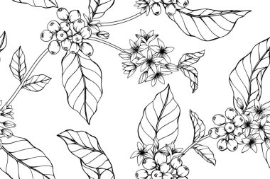 Seamless Coffee flower pattern background. Black and white with drawing line art illustration.