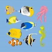 Fényképek Tropical fish on the blue background. Vector illustration