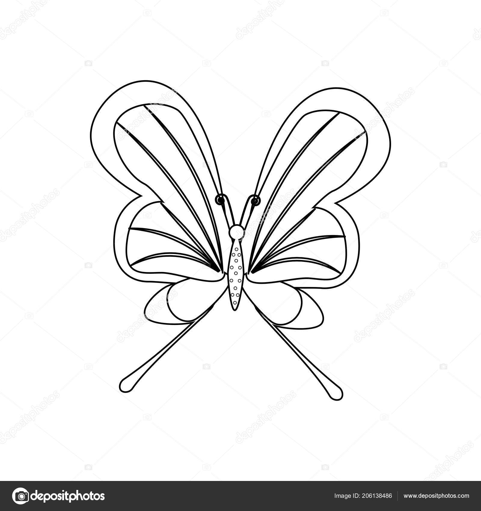 Butterfly Coloring Pages White Background Vector ...