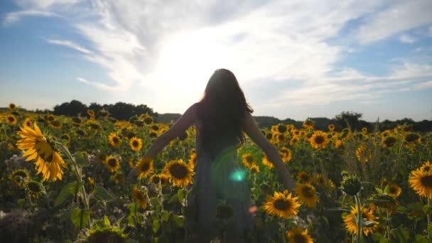 K nepoznání dívka stojící na žluté slunečnice pole a zvyšování rukou. Mladá krásná žena v šatech těší letní přírody na louce. Sluneční svit v pozadí. Koncept svobody. Zpomalený pohyb