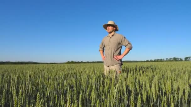 Young male farmer standing in green plantation of wheat and talking about a grain harvest on sunny summer day. Concept of agricultural business. Beautiful nature landscape. Low angle view Close up