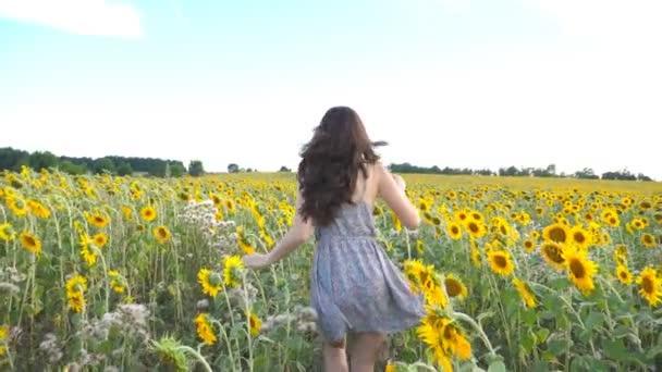 K nepoznání krásná dívka běží na žluté slunečnicová pole. Šťastná mladá žena běhat přes louku během letního dne. Svoboda volného koncept. Zpomalený pohyb