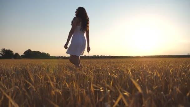 Krásná dívka kráčí po pšeničném poli pod modrou oblohou při západu slunce. Mladá žena jde na louku. Letní volný čas v přírodě. Boční pohled Zavřít Zpomalený pohyb